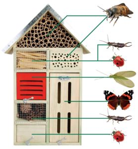 un h tel insectes sur mon balcon est ce utile rookie garden. Black Bedroom Furniture Sets. Home Design Ideas