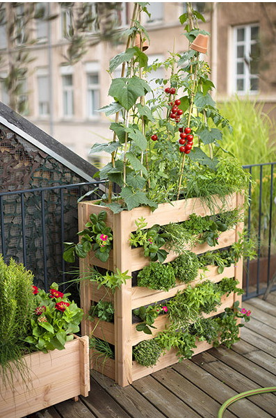 potager vertical 10 id es pour un balcon magnifique. Black Bedroom Furniture Sets. Home Design Ideas